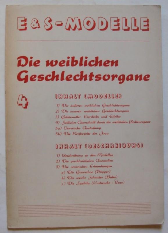   E & S-Modelle: Die weiblichen Geschlechtsorgane (Modelle und Beschreibung).