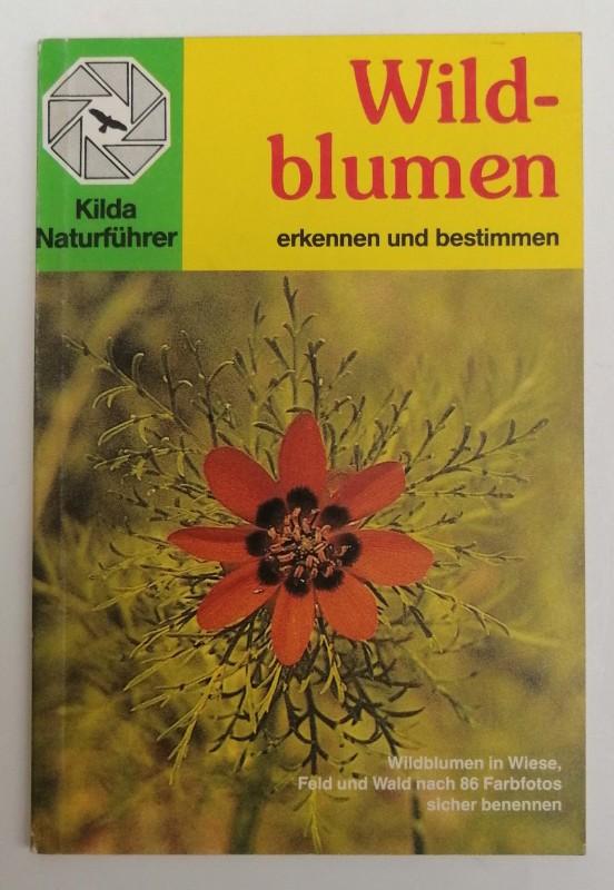 | Wildblumen erkennen und bestimmen. Wildblumen in Wiese