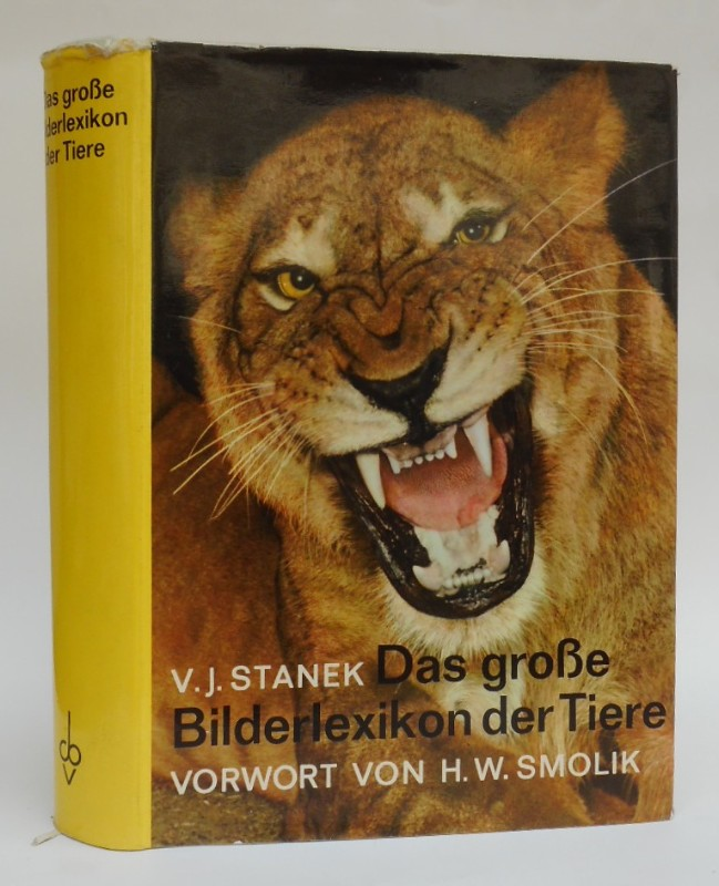 Stanek